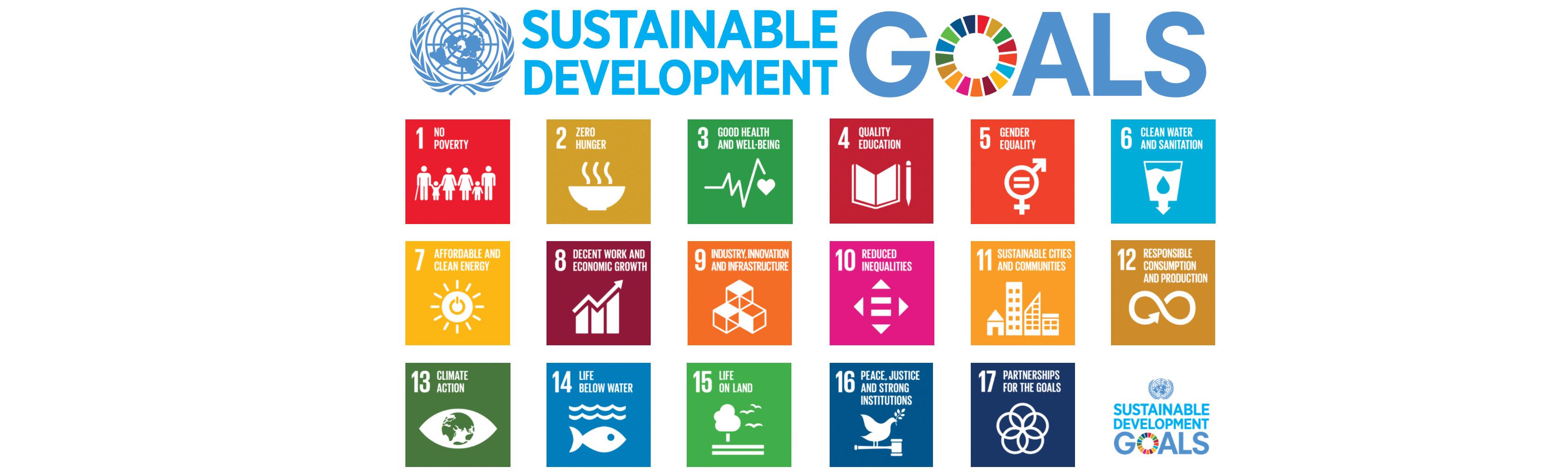 UN globale Ziele